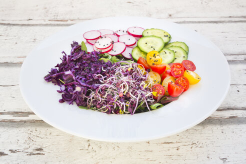 Plate of organic leaf salad, red cabbage, tomatoes, cucumber and radish sprouts - LVF05941