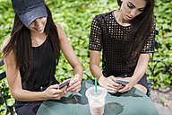 Two twin sisters looking at cell phones in a park - GIOF02213