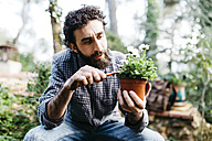 Man pruning flower in his garden - JRFF01264