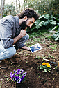 Man taking photographs with a tablet of flowers planted in garden - JRFF01282