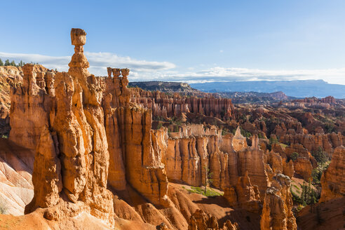 USA, Utah, Bryce Canyon National Park, hoodoos in amphitheater as seen from Navajo Loop Trail - FOF09010