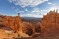 USA, Utah, Bryce Canyon National Park, Thors Hammer and other hoodoos in amphitheater at sunrise as seen from Navajo Loop Trail - FOF09025