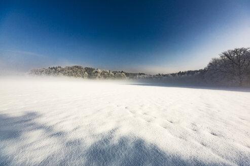 Germany, Bavaria, winter landscape near Chiemsee - THAF01904