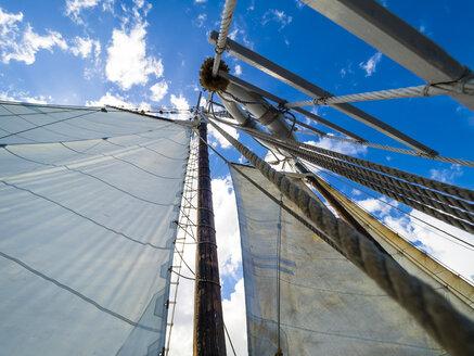 Mast of a historical sailing ship - AMF05340