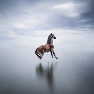 Carousel horse in a lake - XCF00153