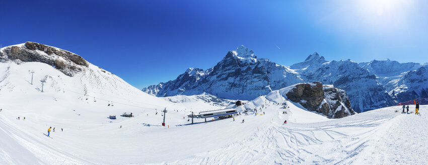 Switzerland, Canton of Bern, Grindelwald, view from First to Schreckhorn and Wetterhorn and ski slope - AMF05351