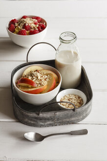Bowl of porridge with raspberries and bowl of porridge with apples - EVGF03128