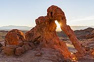 USA, Nevada, Valley of Fire State Park, Elephant Rock, sandstone and limestone rocks - FOF09083