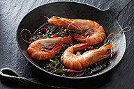 Prawns with hernbs, chili and garlic in iron pan - CSF28158