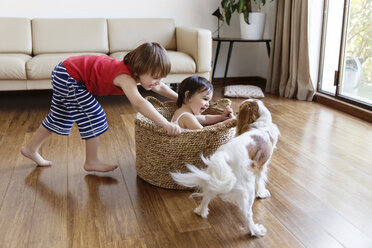 Toddler girl sitting in a basket while her brother pushing her around in the living room - LITF00566
