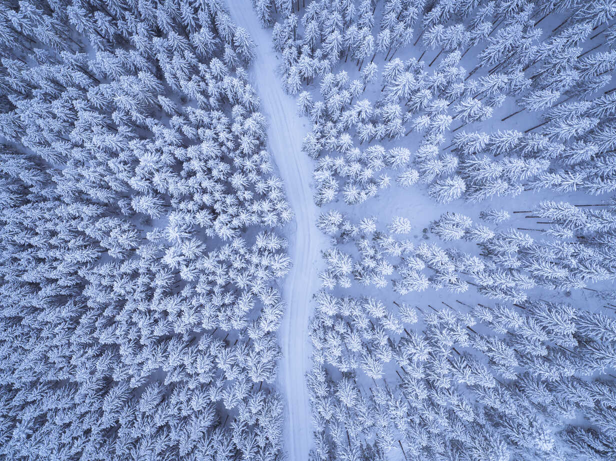 Austria, Gosau, aerial view of road through coniferous forest in winter - STCF00288 - Spotcatch/Westend61