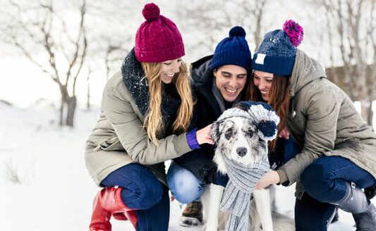 Three friends having fun their border collie in the snow - MGOF03148