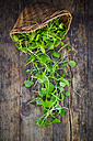 Wickerbasket of organic winter purslane on dark wood - LVF05966