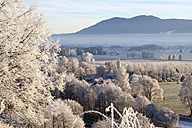 Germany, Bavaria, Grossweil, winter morning with hoarfrost - SIEF07390