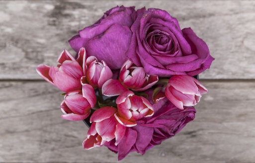 Tulips and roses - TCF05359