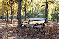 Empty bench in autumn park - MOMF00032