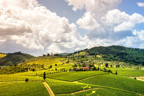 Italy, Tuscany, rolling landscape with vineyards - PUF00621