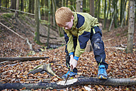 Boy chopping wood in forest - JEDF00289