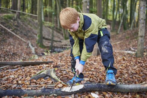 Boy chopping wood in forest - JEDF00289