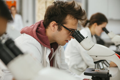 Laboratory technicians using microscopes in lab - ZEDF00577