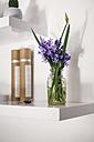 Spring flowers in a vase - MOMF00140