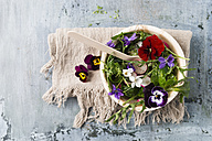 Bowl of leaf salad with red radishes, cress and edible flowers - MYF01906