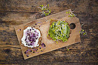 Cream cheese sandwich and sandwich with avocado cream garnished with radish sprouts - LVF06042