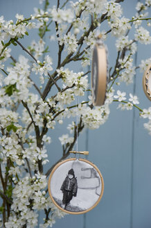Embroidery frames with photographies printed on canvas hanging at blossoming sloe twigs - GISF00277