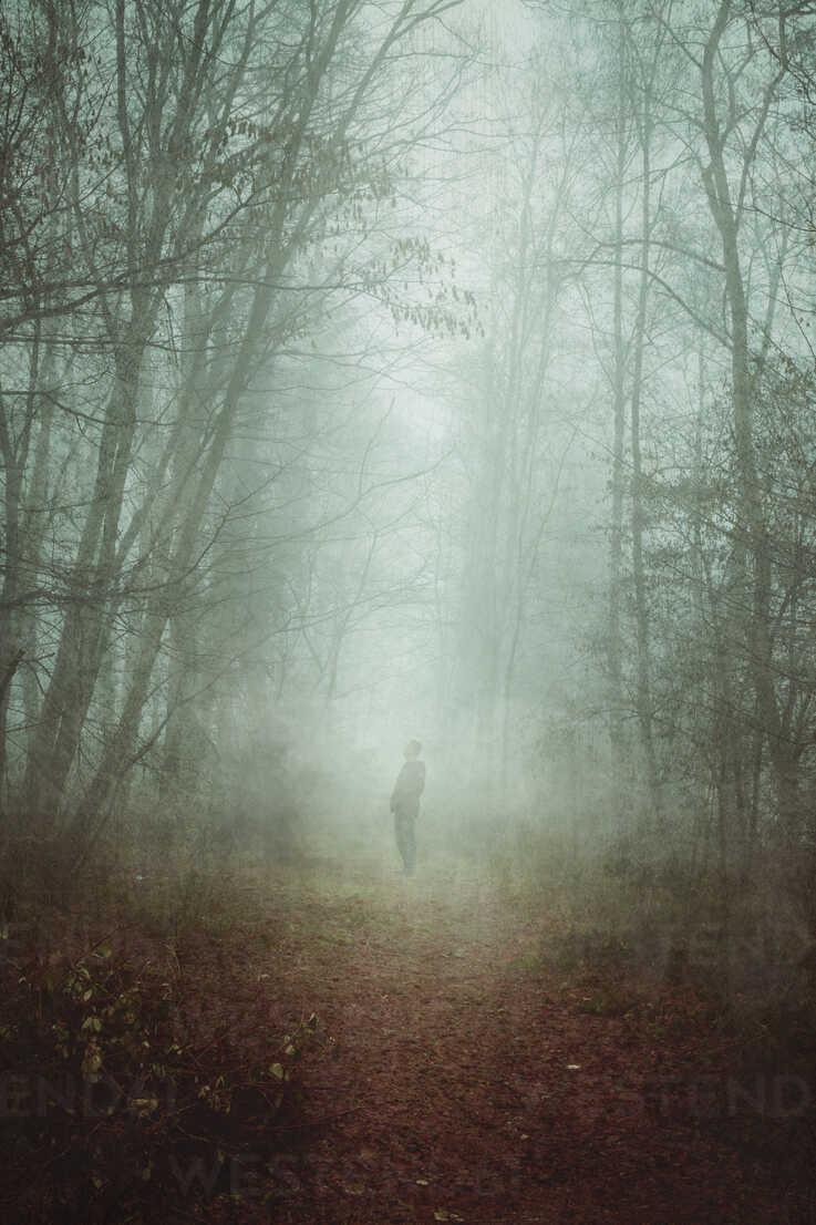 Man on forest path in fog - DWIF00845 - Dirk Wüstenhagen/Westend61