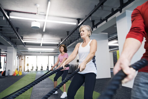 Seniors in gym working out with battle ropes - HAPF01522