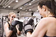 Young women boxing in gym - HAPF01548