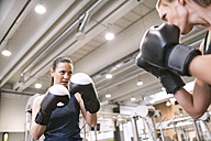 Young women boxing in gym - HAPF01551