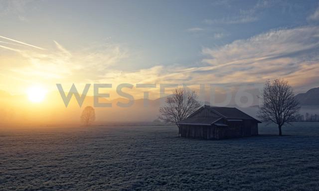 Germany, Bavaria, sunrise near Sindelsdorf - LHF00526 - Hans Lippert/Westend61