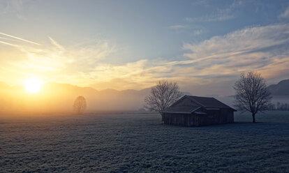 Germany, Bavaria, sunrise near Sindelsdorf - LHF00526