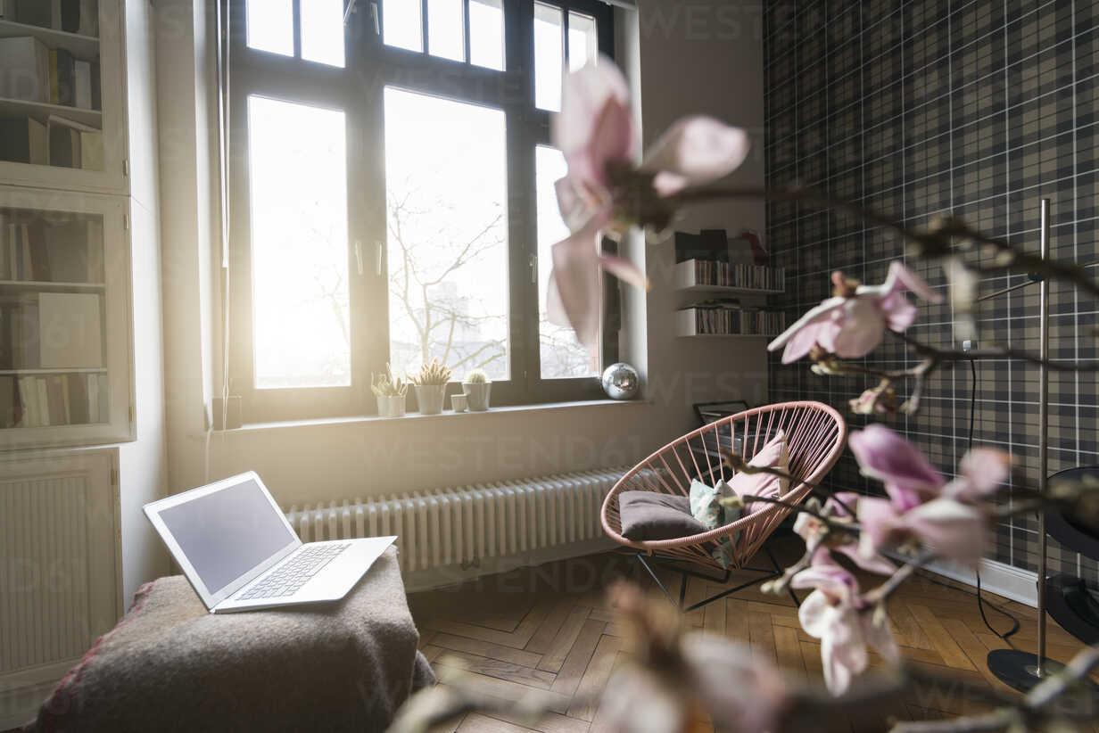Living room with window - SBOF00379 - Steve Brookland/Westend61