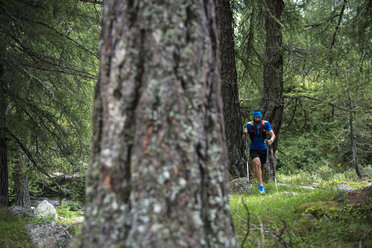 Italy, Alagna, trail runner on the move in forest - ZOCF00261