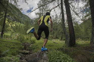 Italy, Alagna, trail runner on the move in forest - ZOCF00267