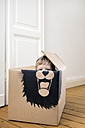 Boy inside a cardboard box painted with a lion - PSTF00002