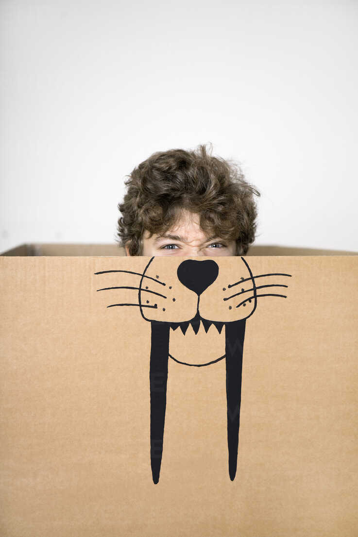 Boy inside a cardboard box painted with a saber-toothed tiger - PSTF00020 - Petra Stockhausen/Westend61