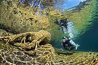 Austria, Tyrol, Lake Fernsteinsee, tree under water with a diver - GNF01394