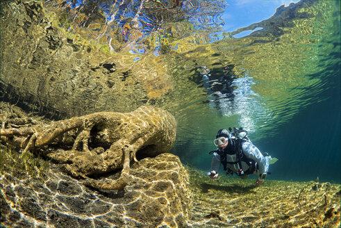 Austria, Tyrol, Lake Fernsteinsee, tree under water with a diver - GNF01394
