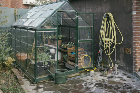 Greenhouse with seedlings in a garden - MFF03495