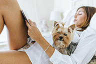 Portrait of Yorkshire Terrier in bed with owner reading a book - KIJF01490