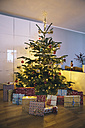 Decorated Christmas tree in living room with Christmas presents in the foreground - MFF03505
