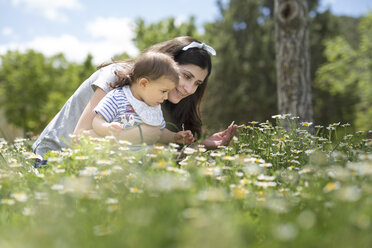 Mother and baby son on blossoming field of flowers in spring - JASF01782