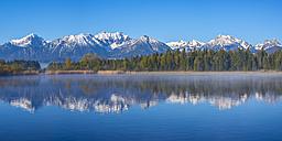 Germany, Bavaria, Allgaeu, Lake Hopfensee in the morning - WGF01082
