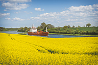 Germany, Schleswig-Holstein, blossoming rape field in front of North Sea and Baltic canal - KEBF00554