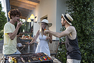 Friends having a barbecue party - ZOCF00361