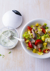 Pickled herring salad with herb sauce - PPXF00047
