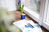 Draft and flower on windowsill in office - FKF02322